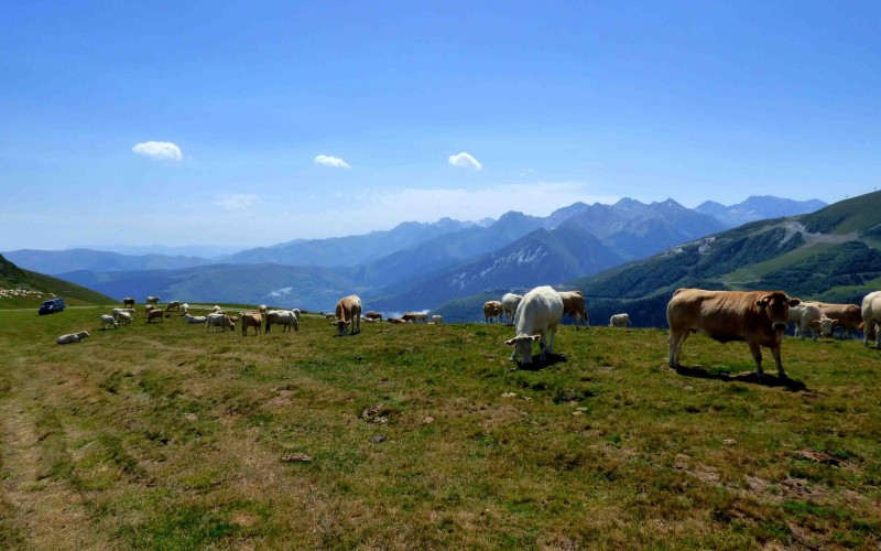 GR10 self-guided Section 4 : From Cauterets to Luchon